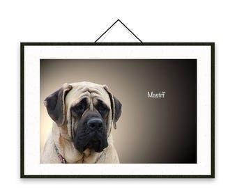 Mastiff - Dog breed poster, wall sticker, nursery decor, dog print, wall print, nursery print, shabby print   Tropparoba - 100% made Italy