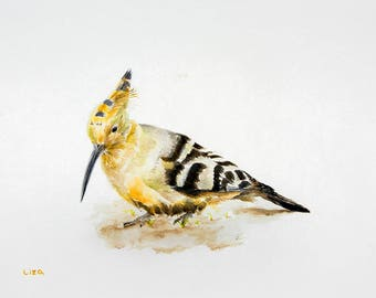 Hoopoe Original Watercolor Painting High Quality Giclée Print canvas , home decor office nursery animal art Handmade gift PRINT decoration