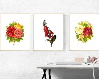 Set of 3 Framed Botanical Floral Prints | Wall Decor, 3 Framed Prints, Framed Print Set, Wall Art, Framed Print, Contemporary Art, A4 Prints