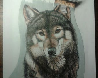 Painting / Draw - Wolf - Colored Pencil