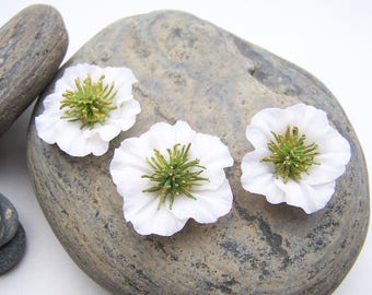 3 white prickly flowers