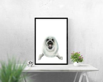 Seal Print - Seal Illustration - Giclee Print - Seal Pup Drawing - Blue Planet Illustration - Cute Illustration - Seal Gift - Sealife Print
