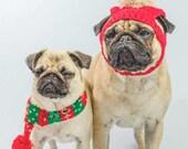 Pug Christmas Blank Greet...