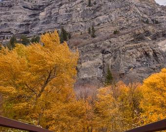 Mountain, Utah, Fall, Provo Canyon, Autumn, Bridge, Landscape Photo, Photography, Digital Downloads