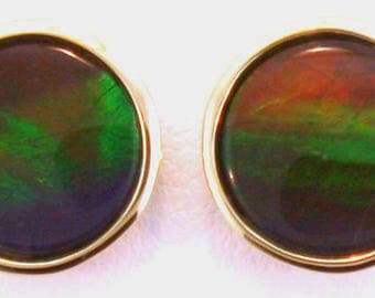 Pair of  large Round   Canadian Ammolite set in 14k Yellow Gold