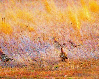Pheasant Painting In Yellow.