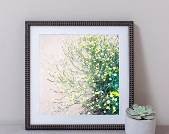 Yellow Wildflowers Wall Art, Photography, Framed Print