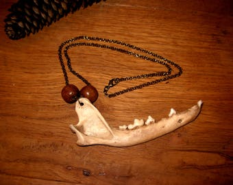 Fox jaw necklace