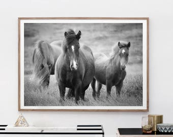 Horse Art Print, Digital Download, Fine Art Photography, Black And White, Modern Boho, Nursery Print Art, Animal Wall Art, Horse Love