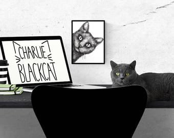 Sale item for my first 3 customers! Animal Print: 'Charlie Black Cat' Illustration - A5