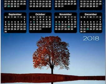 """Tree and Blue Sky Reflecting on Water 2018 Full Year View 8"""" Calendar - Magnet or Wall #3856"""