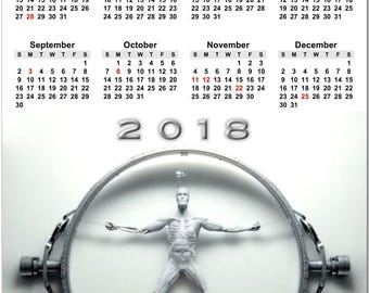 """Westworld HBO Science Fiction Series 2018 Full Year View 8"""" Calendar - Magnet or Wall #3869"""
