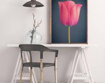 Pink Tulip, Fine Art Photography Print, Dark Floral Wall Art, Botanical Print, Flower Art Print, Large Flower Photography Wall Art