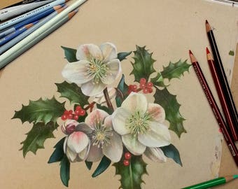 Christmas Rose and Holly Original Painting