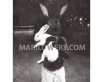 Black Rabbit Art Print, 8x10 Inch Print, Anthropomorphic Mixed Media Collage, Boy Holding White Rabbit, Collage Art