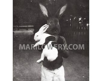 Black Rabbit Art Print, 8x10 Inch Print, Anthropomorphic Mixed Media Collage, Boy Holding White Rabbit, Collage Art, frighten