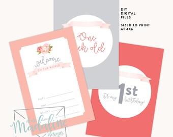 Printable Baby Milestone Cards {Digital File}