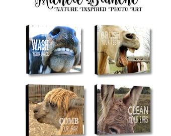 Farm animal canvas bathroom art, photo typography, farmyard bathroom set. Brush your teeth rustic farm art. Wash your face kid's bathroom.