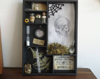 Halloween apothecary display, spooky, creepy, miniature, gothic witch decorations, shadow box, Dungeon, haunted, witchcraft
