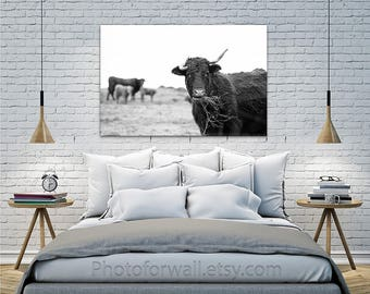 Buffalo print/cow decor/large canvas art/cow photography/cow print/Rustic Bathroom wall Decor/cow wall art/black and white photography