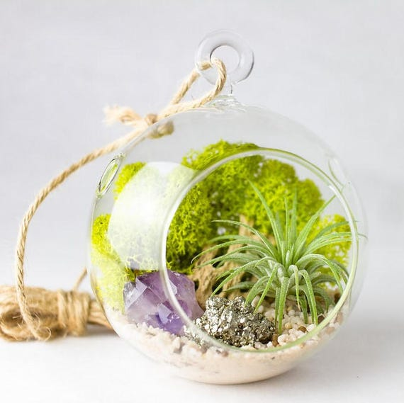Air Plant Terrarium Kit || Small || Customize Crystal + Stone Elements || Rose Quartz, Amethyst, Geode, Pyrite, Desert Rose