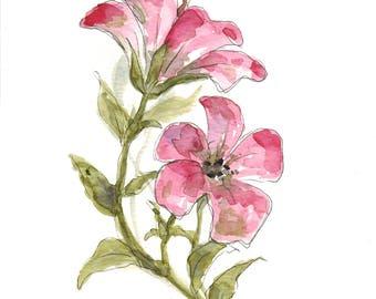 Pink Flowers (original watercolor)