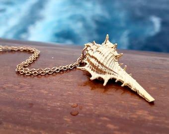 Shell Chain