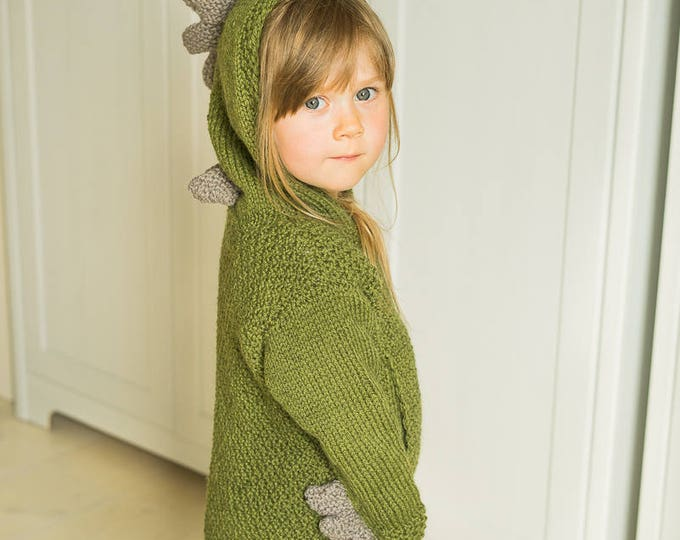 Dragon sweater Rex (3-4-year-old size)