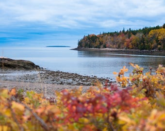 Acadian Fall - Photographic Print