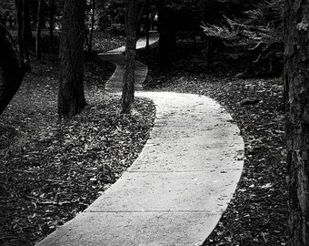 Photo Art,Trail In The Woods, Black and White Photograph, Woods Trail, Trail