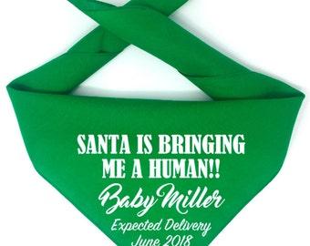 Christmas Pregnancy Announcement, Dog Pregnancy Announcement Bandana, Santa Is Bringing Me A Human, Personalized Pregnancy Announc