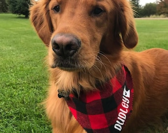 Personalized Plaid Dog Bandana, Flannel Bandanna, State MN outline, Name, Personalized Dog Bandana, Buffalo Plaid, Dog Name, Dog Scarf