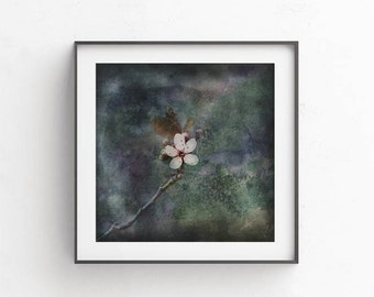 Dark wall art, Floral art, flower wall art, digital photography, Flowers PRINTABLE art, brown wall decor, commercial use, japan flowers
