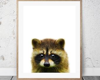 Raccoon kids art