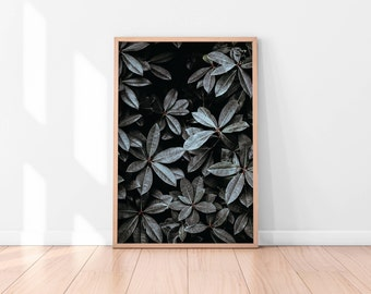 Black and white Leaves Printable Art, Botanical Print, Leaves Art Print Succulent Botanical Wall Art Plant Wall Art Print Digital Download