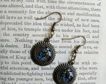 Forget me not botanical resin earrings