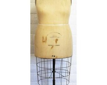 Vintage WOLF Dress Form Model 1960
