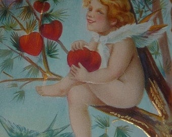 Cupid Sitting in a Tree With Hearts Antique Valetine Postcard
