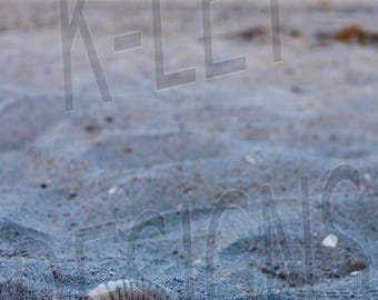 Digital Photo Download - Wrightsville Beach, NC Sea Shell & Pier