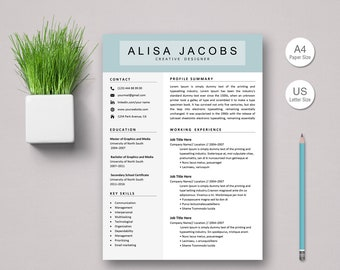 Resume Template Instant Download, CV Template, Professional Resume Template, Resume Template for Word