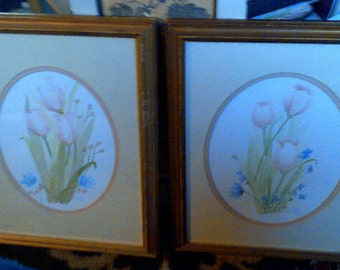 Peachy Coral Tulips Set of Two