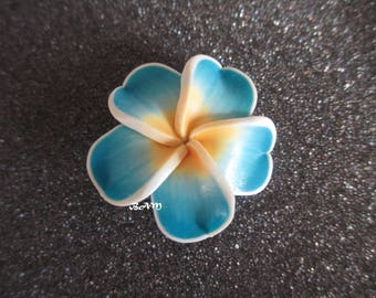 Turquoise and yellow 35 mm frangipani flower pierced