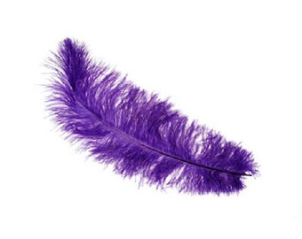 """Ostriach Purple Feather 12"""" to 15"""""""