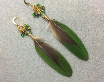 Dark green Amazon parrot feather earrings adorned with tiny dangling Czech glass beads.