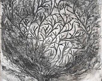 Tree - Black, White and Silver