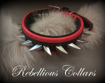 Spiked leather dog collar for little dogs