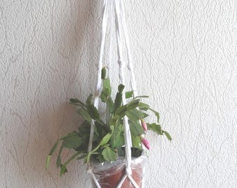 Decorative hanging planter to the other
