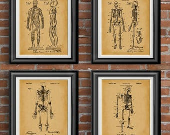 Anatomically * Anatomy Poster Gift * Anatomy Gift Poster * Pharmacist Gift * Pharmacist Gifts * Anatomy Art Decor * Patent Set of 4 PP 9408
