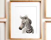 Safari nursery decor, Zebra print, PRINTABLE art, Safari animals wall art, Baby zebra, Safari theme, Nursery wall art, Safari baby shower