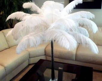 """10pcs 7.9"""" White Natural Ostrich Feathers....Free Shipping in US!"""